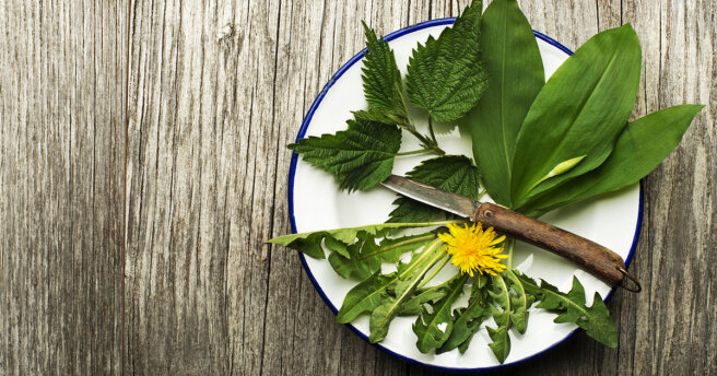 Weed Salads: TOP 3 healthy food recipes