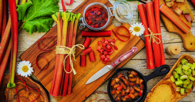 Best Rhubarb recipes: TOP 5 delicious dishes