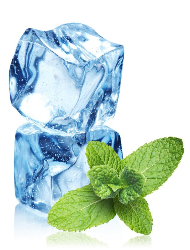 Freezing mint