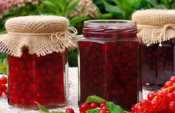 Jam-five minutes of red currant: a quick recipe