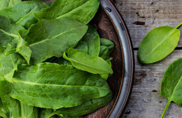 What to make from sorrel: TOP 3 healthy soups